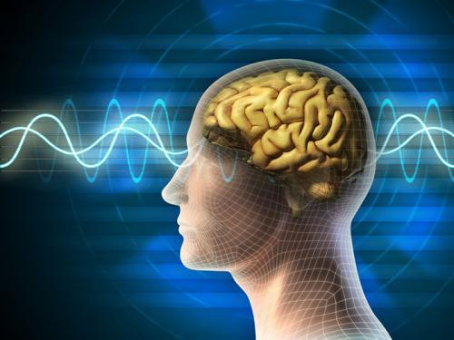 Phương pháp tăng trí nhớ bằng cấy ghép não